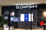 Glowfish@กรุงเทพฯ :: ผลงานผนังบานเลื่อนกันเสียงเคลื่อนที่ ห้องประชุม